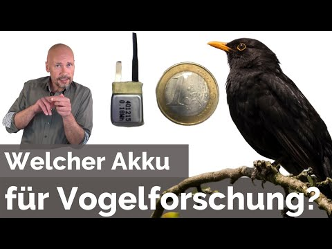 [Vogelforschung] Welche Anforderungen stellt der Artenschutz an den Akku?