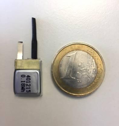 Batterie für Vogel-Tracking neben Euromünze